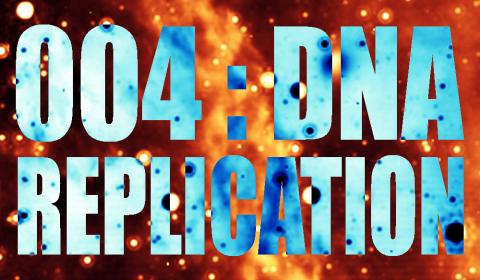 004: DNA Replication