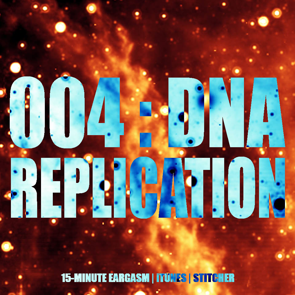 004: DNA Replication