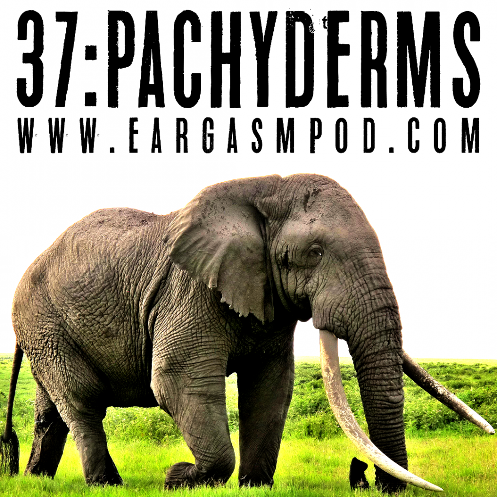 037: Pachyderms