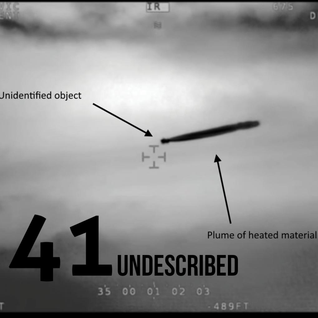 041: Undescribed